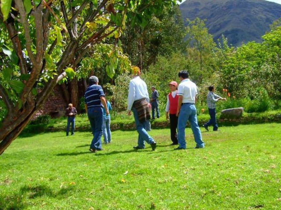 Our groups enjoying the back yard. You can pick up your own fruit.