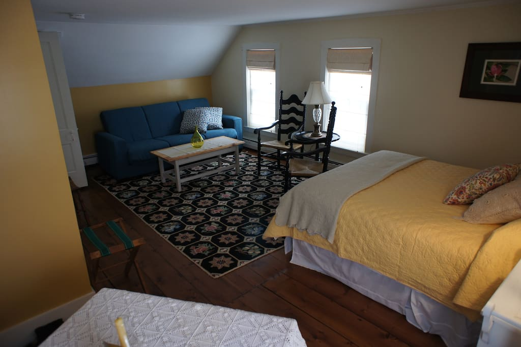 large bright room with queen bed and couch converts to bed
