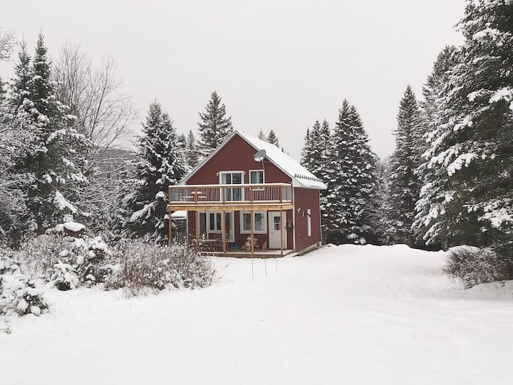 Cozy cabin 3 bdr on private forest w/trails & spa