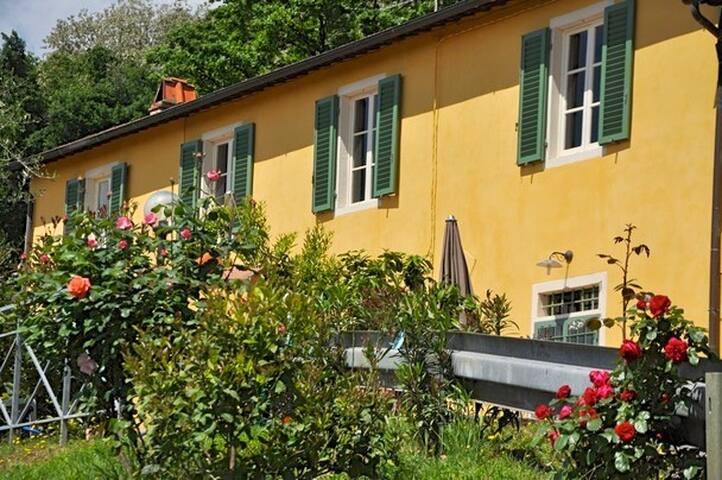 VILLA BLUE SKY POOL - Borgo A Buggiano - Hus