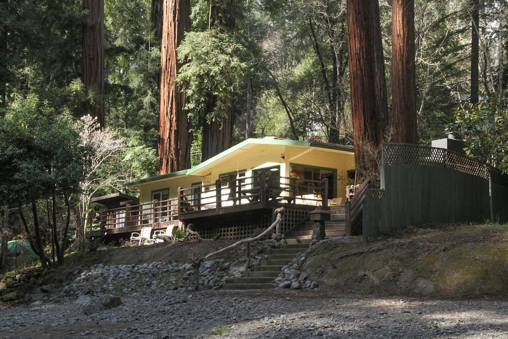 Your retreat among the redwoods