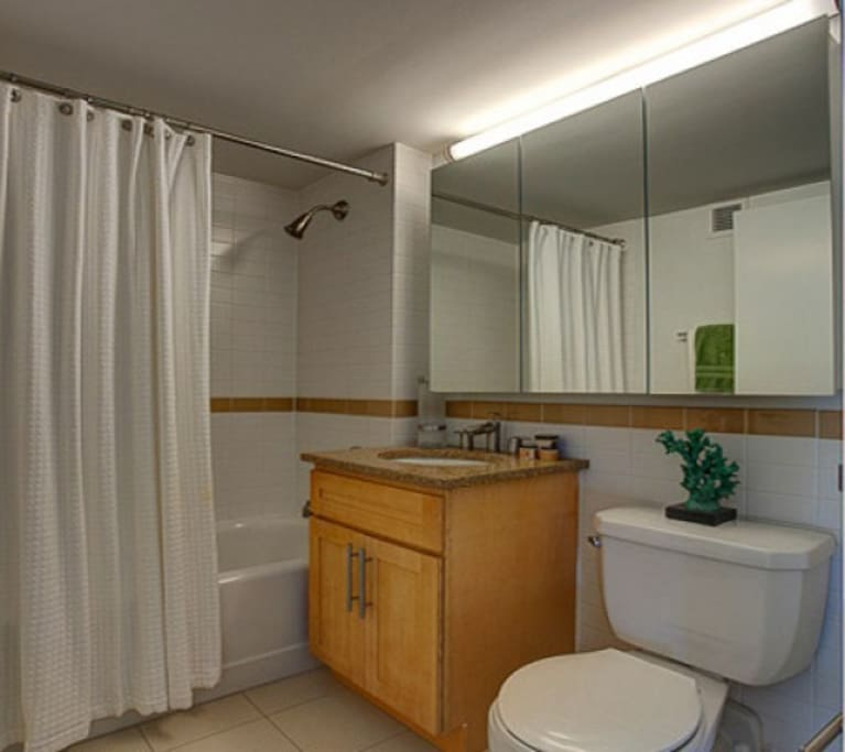 This bathroom also includes the washer and dryer.