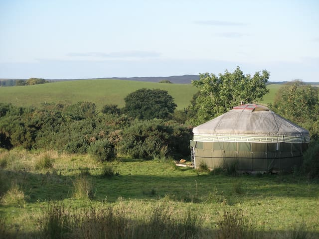 Beautiful and tranquil yurt  - Kirkcowan