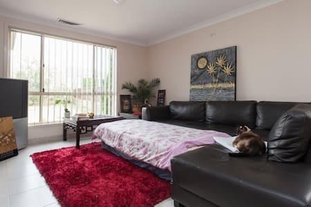 SOFA SLEEP FOR BUDGET TRAVELERS - Merrylands - House
