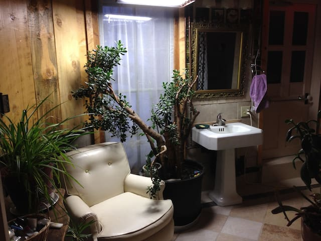 Main tile bathroom with 50 year old jade plant.