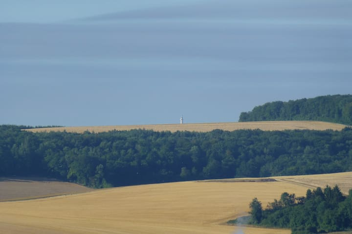 La tour de Montfaucon en Argonne vue de la terrasse