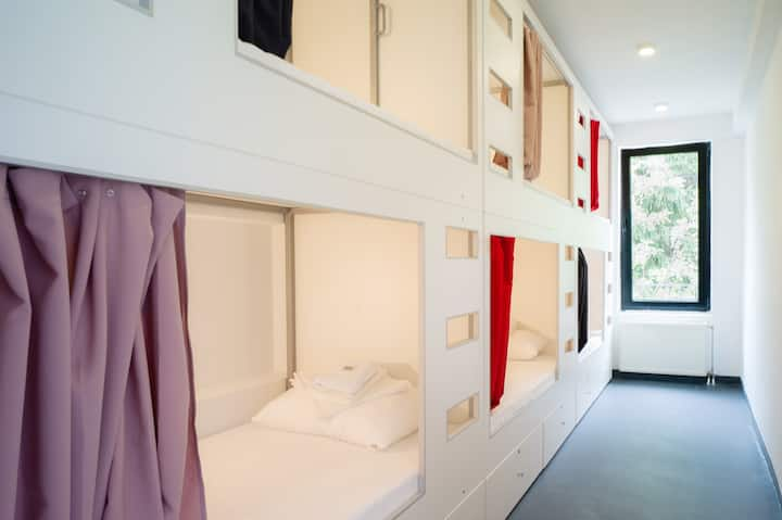 Bunk bed in mixed dorm room, parking included
