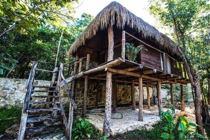 """Escarabajo Rojo """"The wood cabin"""""""