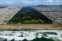 Golden Gate Park (5 blocks away)