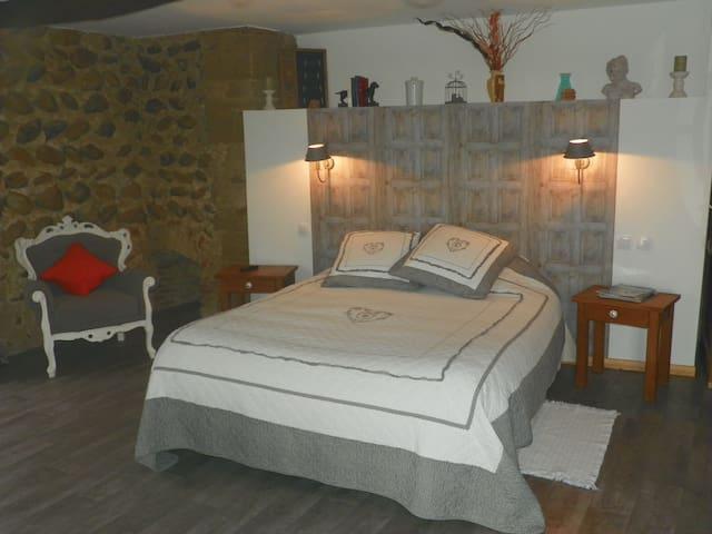 chateau de la saone - Lens-Lestang - Penzion (B&B)