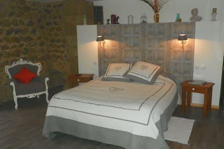 chateau de la saone - Lens-Lestang - Bed & Breakfast