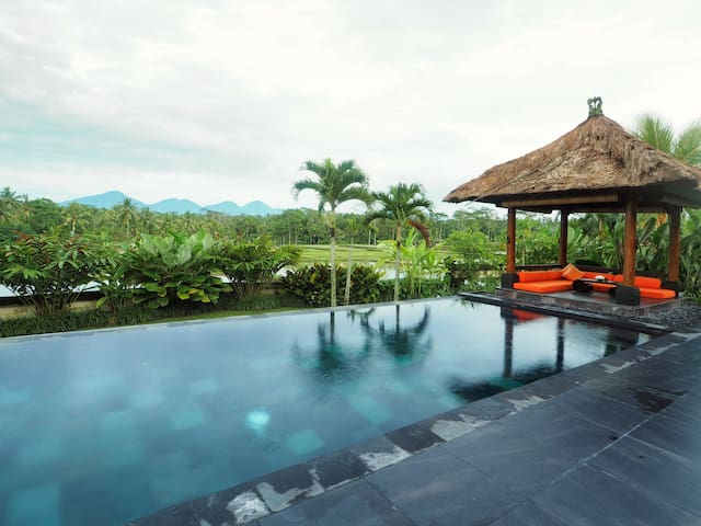 Relaxing one bedroom private villa in Ubud Bali - Payangan - Villa