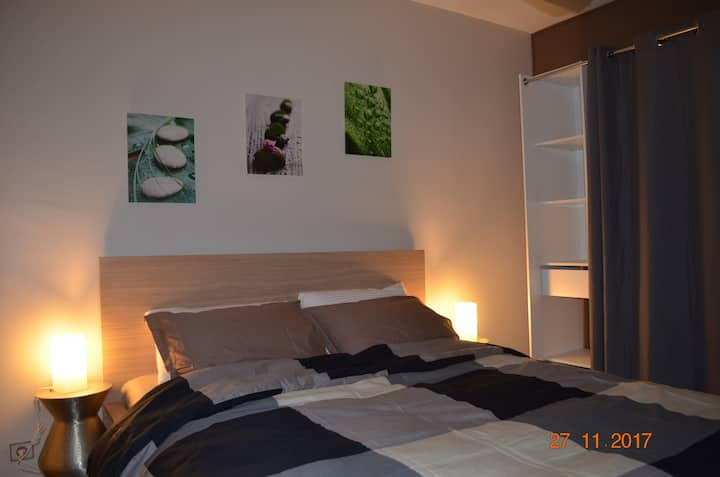 Charmant appartement au pied du Mont Blanc