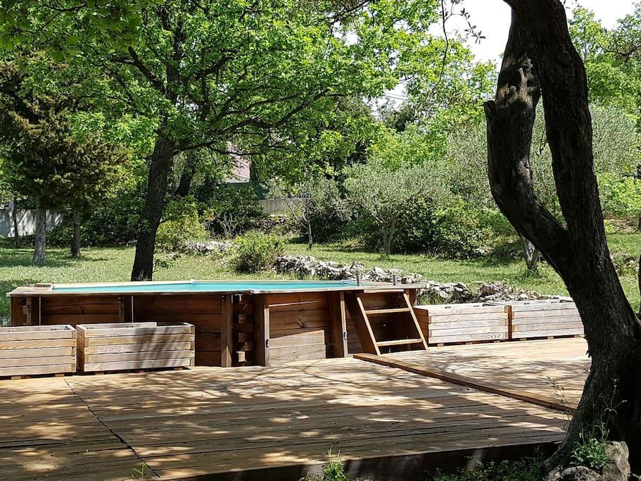 Espace piscine privé au milieu des oliviers et chênes verts.