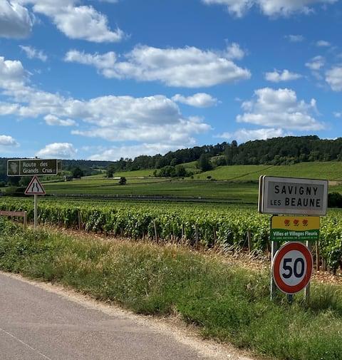 Le Savigny