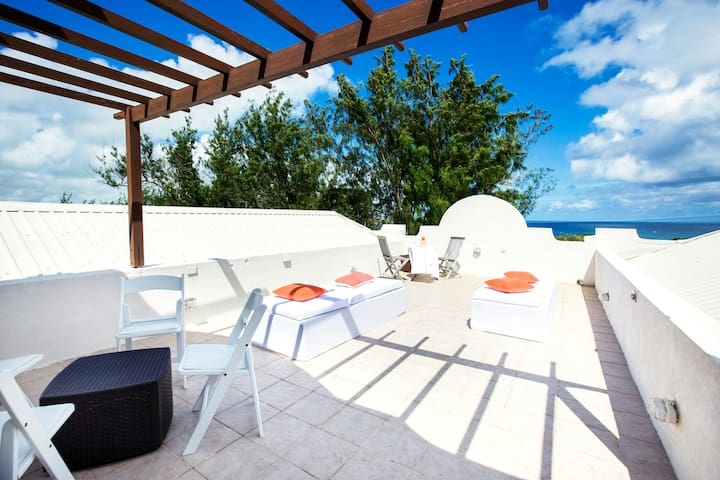 Spring Bay Villa: your ocean-view, island getaway - Saint Philip - Willa