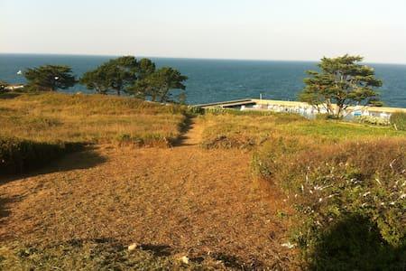 Maison moderne sur l'Ile de Houat (Natura 2000) - Île-d'Houat - Hus