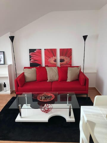 Cosy Furnished Studio- near the Genava Lake (10.5)
