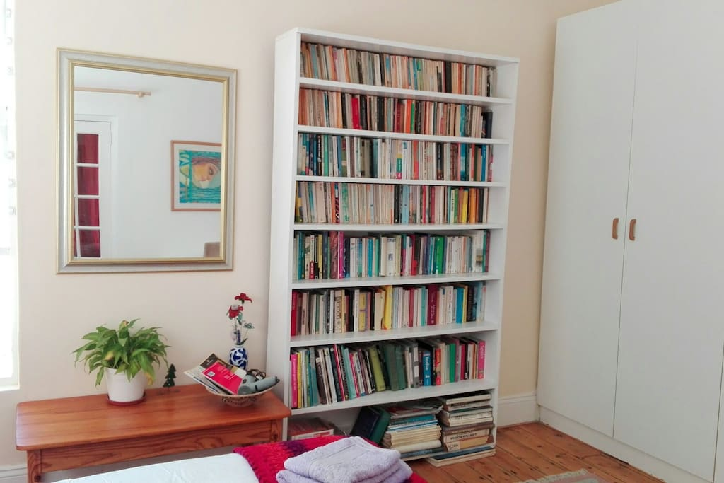 Books and cupboard space in main bedroom