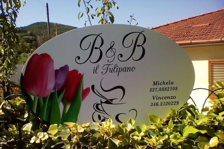 B&B Il Tulipano