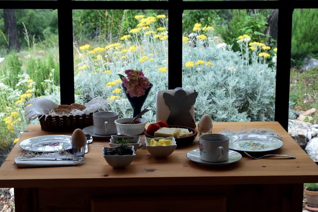 Doğayla iç içe mutfakta yemek masası sedir ağacı.
