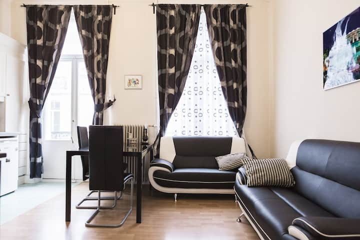 Beautiful apartment in the heart of Brussels