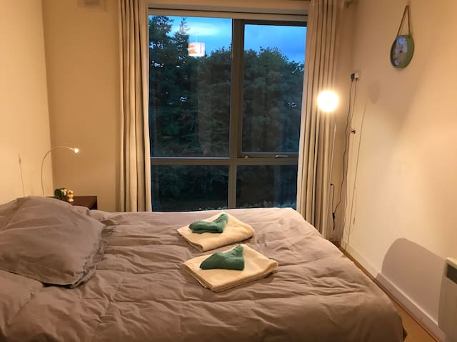 Cozy Private En-suite Room close to Phoenix Park