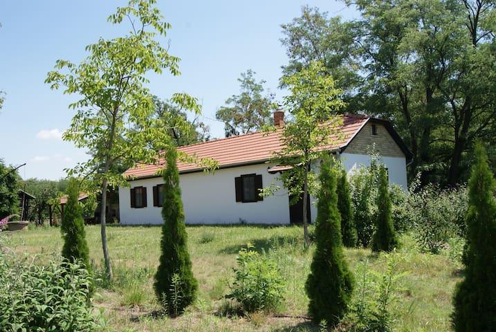 Szabadszállás Zuhause in der Puszta