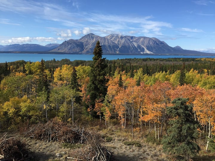 Mount Monarch Retreat - Gorgeous log home in Atlin