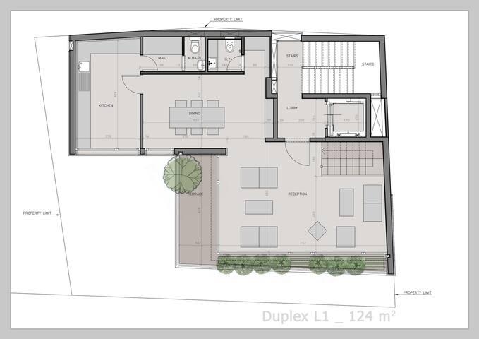 Duplex lower level - Living