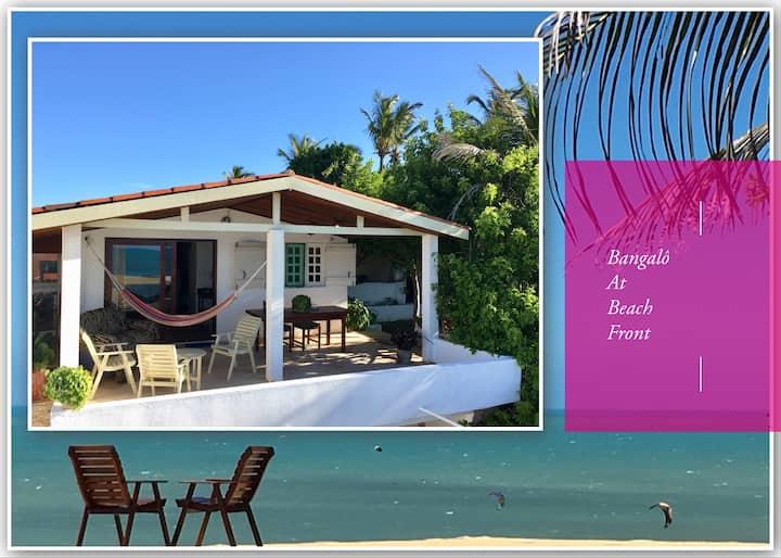 Ocean View Beach Front Property Casa Malou