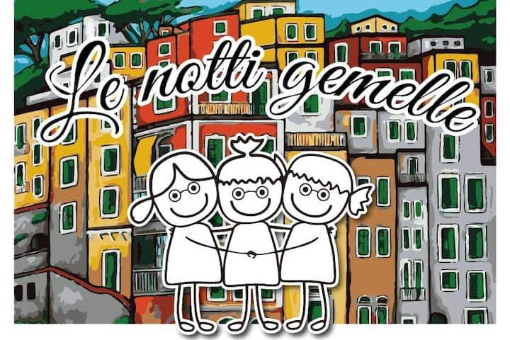 """""""LE NOTTI GEMELLE"""",cod. citra 011024-LT-0293"""