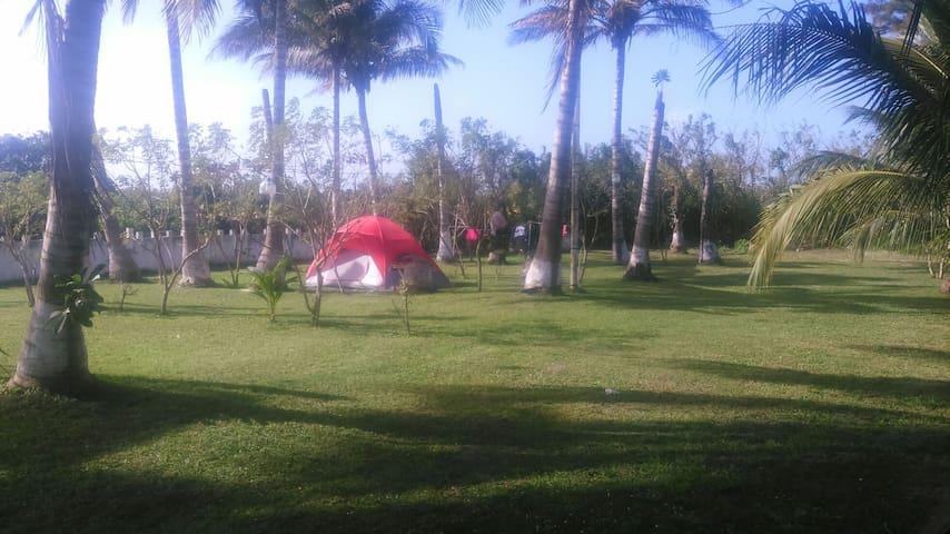 Acampa cerca de la playa - Nautla  - Autre