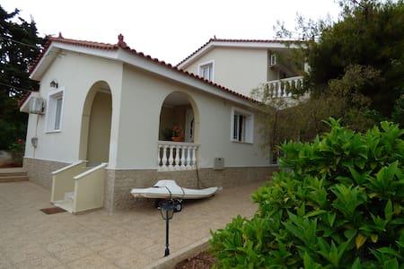 Salamis Villa - Selinia - Haus
