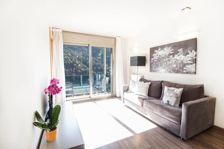 Apartamento de 2 dormitorios con vistas. STJ2
