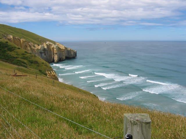 Karaka Alpaca B&B Farmstay - Dunedin - Bed & Breakfast