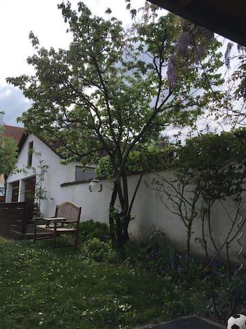 Terrassenwohnung im Herzen Friedbergs