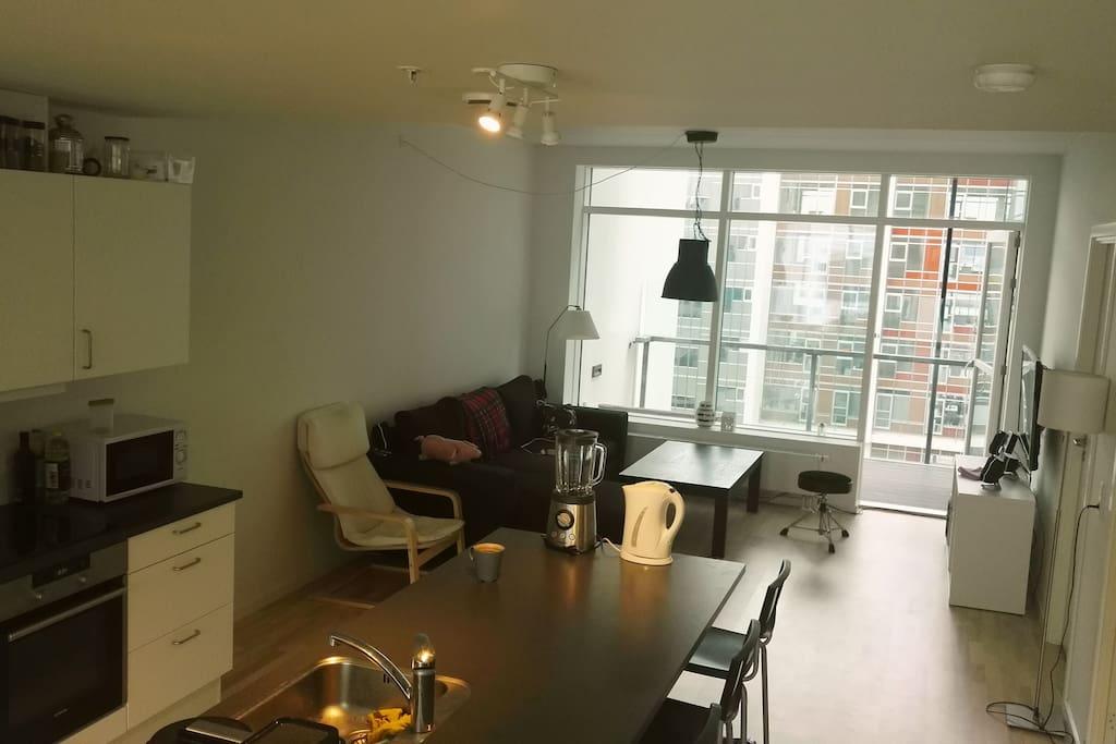 Stue/Køkken/Spisestue - Living room/Kitchen/Dining room (2/3)