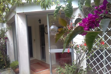 Casa da Bungavília - Figueira da Foz - House