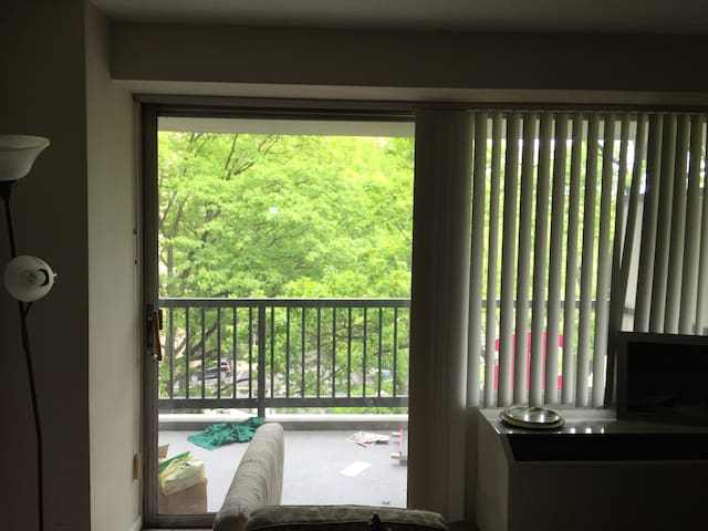 Furnished Apartment near Downtown Stamford - Stamford - Lejlighed