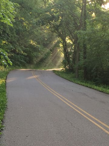 The road on a nice morning