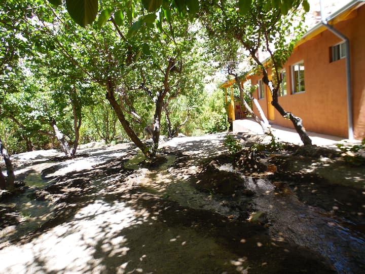Casa en Valle del Elqui
