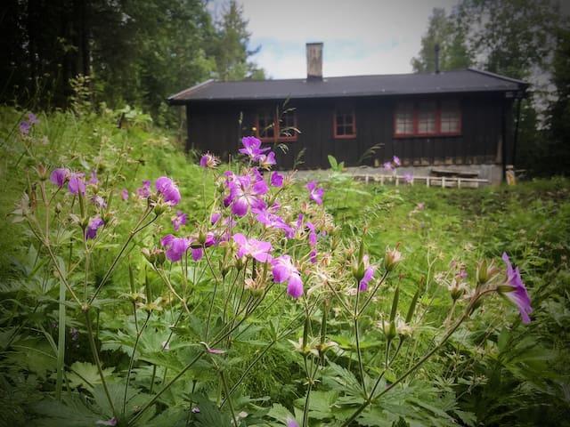 Hideaway cabin in the woods of Oslo (Nordmarka) - Lunner - Houten huisje