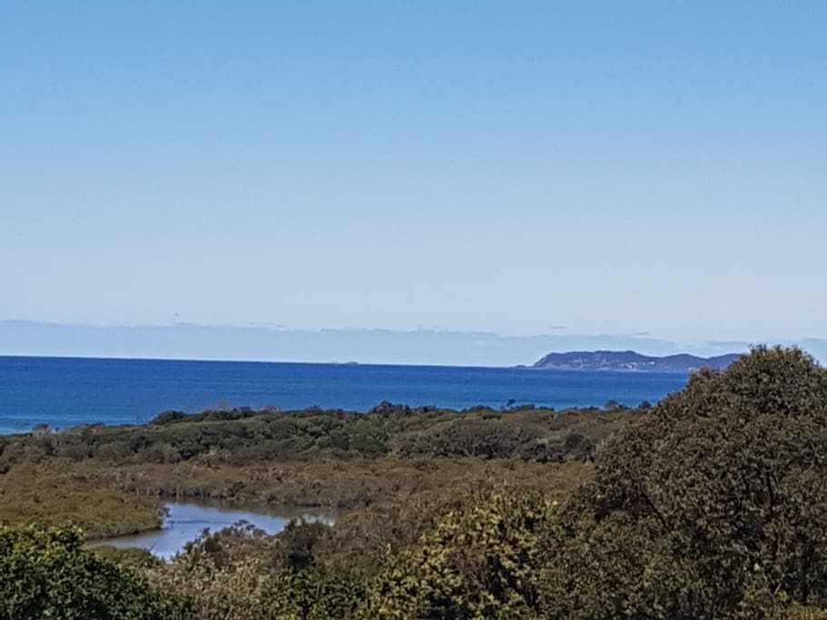 Watch the whales swim towards Byron Bay.