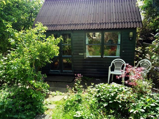 Peaceful wooden summerhouse in green, leafy garden
