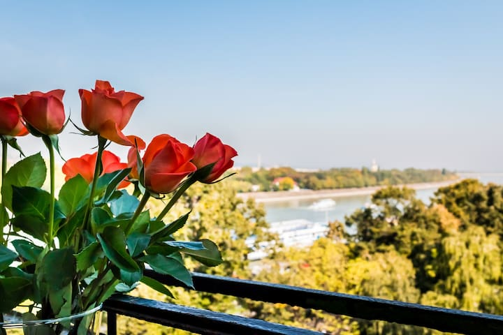 Central Park Suite, Balcony with Danube view
