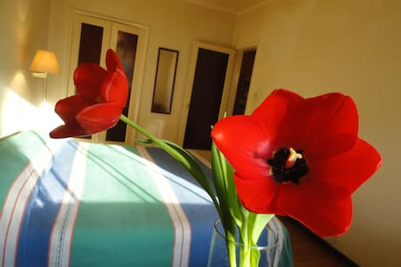 Splendour location flat in the lovely Polanco. - Mexiko-Stadt - Wohnung