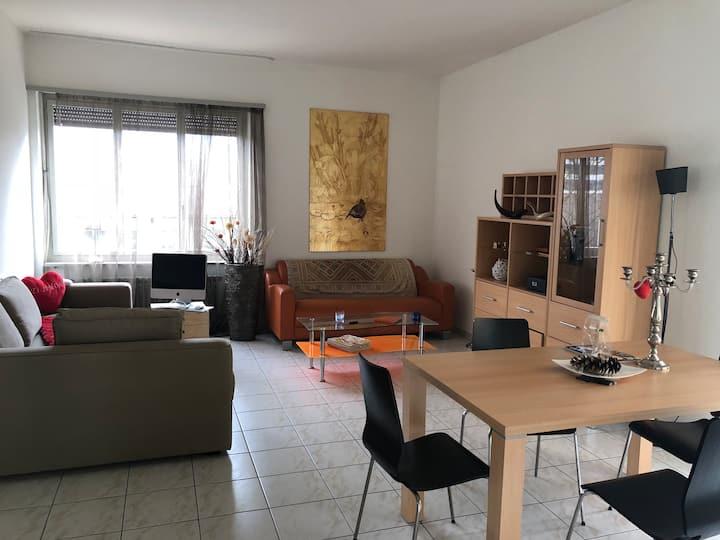 Lugano Cozy  apartment  Switzerland