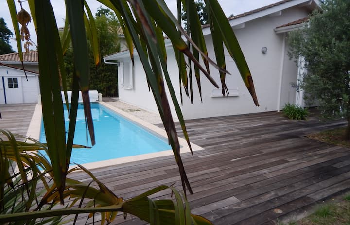 Beautiful villa with swimming pool near the oyster port
