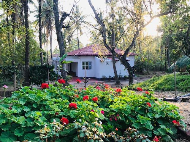 Taimane Homestay and Farms, 10KMS from Kushalnagar